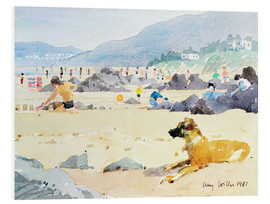 Foam board print  Dog on the Beach, Woolacombe - Lucy Willis
