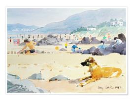 Premium poster Dog on the Beach, Woolacombe