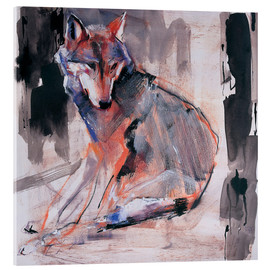 Acrylic print  Sitting wolf - Mark Adlington