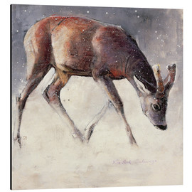 Aluminium print  Jung deer in winter - Mark Adlington