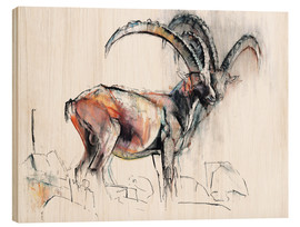 Wood print  ibex - Mark Adlington