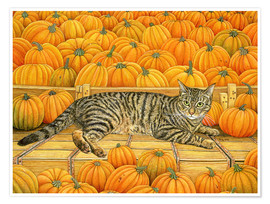 Premium poster  Cat in Pumpkin - Ditz