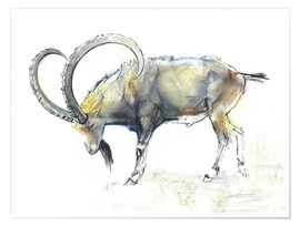 Poster  Ibex - Mark Adlington