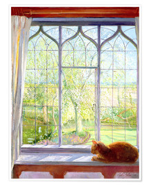 Premium poster  Cat in window in spring - Timothy Easton