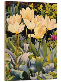 Wood print  Pale tulips - Christopher Ryland
