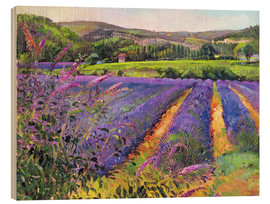 Wood print  Lavender field - Timothy Easton