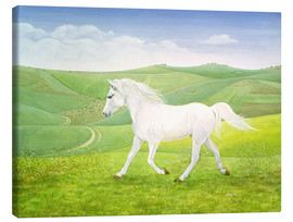 Canvas print  White Horse - Ditz
