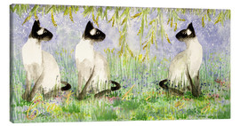 Canvas print  Siamese cats - Suzi Kennett