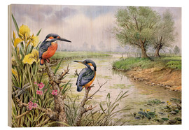 Wood print  Kingfishers on the riverbank - Carl Donner