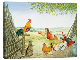 Canvas print  Chicken run - Ditz