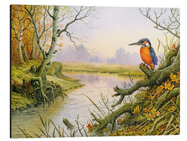 Aluminium print  Kingfisher: scene on autumnal river - Carl Donner