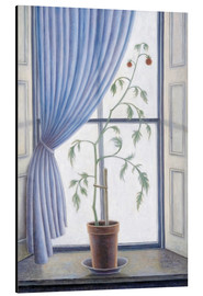 Alu-Dibond  Plant in Window, 2003 - Ruth Addinall