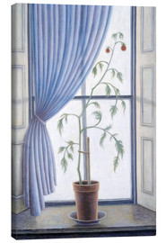 Canvas print  Plant in the window, 2003 - Ruth Addinall