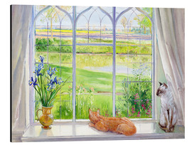 Aluminium print  Cats at the window - Timothy Easton