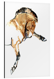 Aluminium print  Stallion - Mark Adlington
