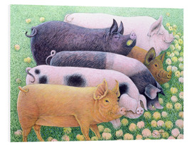 Foam board print  Pigs - Pat Scott