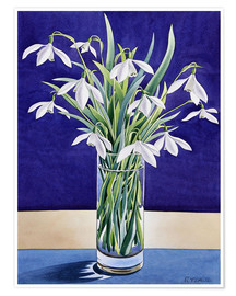 Poster  Snowdrops - Christopher Ryland