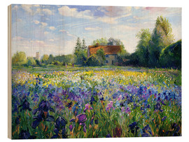Wood  Field of flowers in the sunset - Timothy Easton