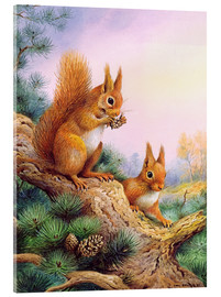 Acrylic print  Pair of Red Squirrels on a Scottish Pine - Carl Donner