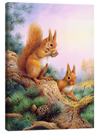 Canvas print  Pair of Red Squirrels on a Scottish Pine - Carl Donner