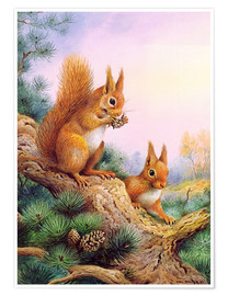Poster  Pair of Red Squirrels on a Scottish Pine - Carl Donner