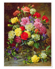 Poster  Carnations of Radiant Colours - Albert Williams