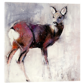 Acrylic print  Shy deer in the snow - Mark Adlington