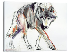 Canvas  Wolf in search - Mark Adlington