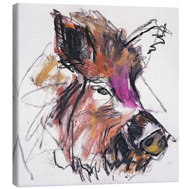 Canvas print  Wild boar - Mark Adlington