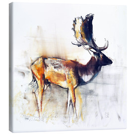 Canvas print  Moose - Mark Adlington