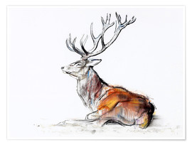 Poster  Lying Stag - Mark Adlington