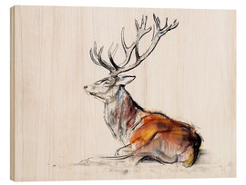 Wood print  Lying Stag - Mark Adlington