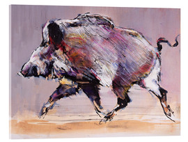 Acrylic print  Running boar - Mark Adlington
