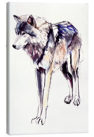 Canvas print  Alpha Wolf - Mark Adlington