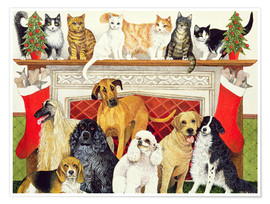 Poster Dogs and Cats