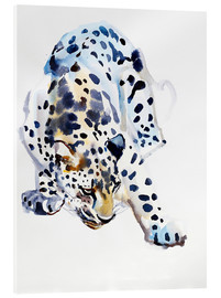 Acrylic glass  Arabian Leopard - Mark Adlington