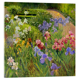 Acrylic glass  flower bed - Timothy Easton