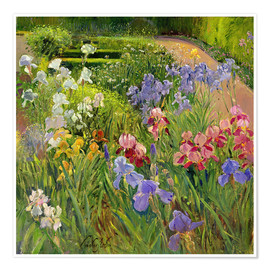 Premium poster  flower bed - Timothy Easton
