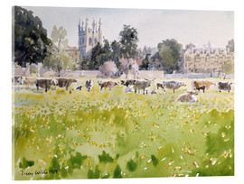 Acrylic print  Looking Across Christ Church Meadows (Oxford) - Lucy Willis