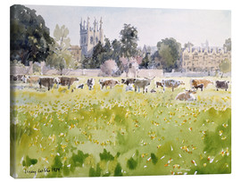 Canvas print  Looking Across Christ Church Meadows (Oxford) - Lucy Willis