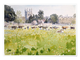 Premium poster Looking Across Christ Church Meadows (Oxford)