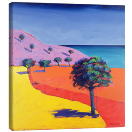 Canvas  Red Path - Paul Powis