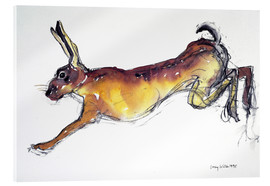 Acrylic print  Jumping Hare - Lucy Willis