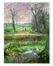 Poster  Spring Walk - Timothy Easton