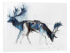 Foam board print  Deers - Mark Adlington
