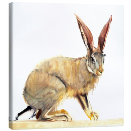 Canvas  Rabbit - Mark Adlington