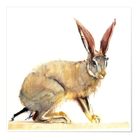 Poster  Rabbit - Mark Adlington