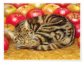 Premium poster Cat and Apples