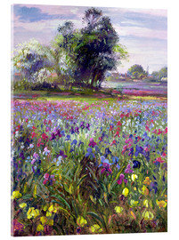 Acrylic glass  Flower field with tree - Timothy Easton