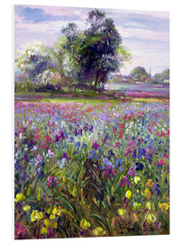 Forex  Flower field with tree - Timothy Easton
